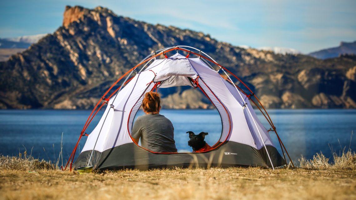 Camper avec son chien