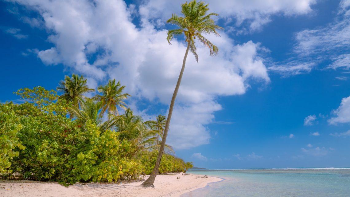 Bon plan :  louer un véhicule pour vos séjours en Guadeloupe